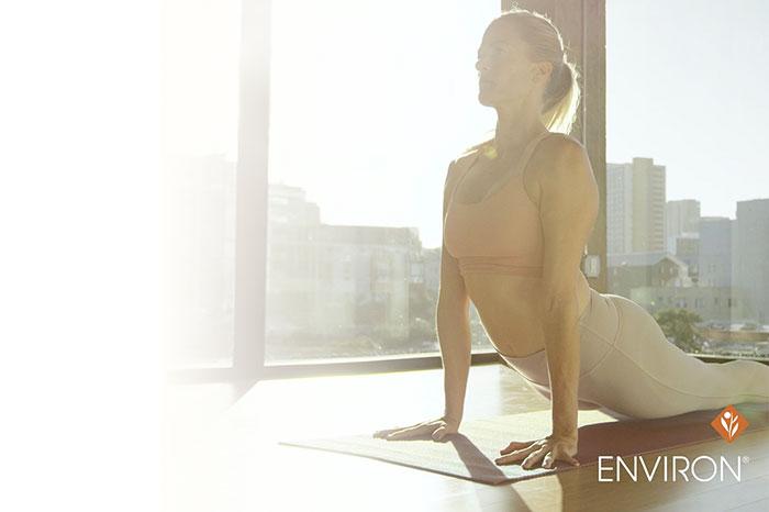 image of women doing yoga in the sunlight